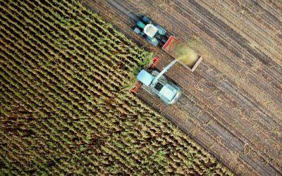 Circuit court alimentaire (5/6): Parcel, mesurer l'impact d'une alimentation locale